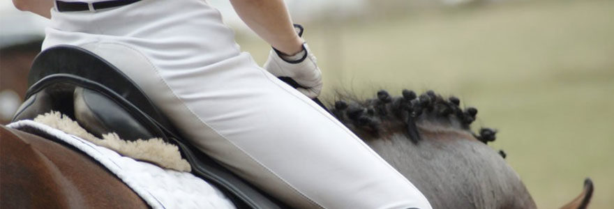 Choisir son pantalon d'équitation